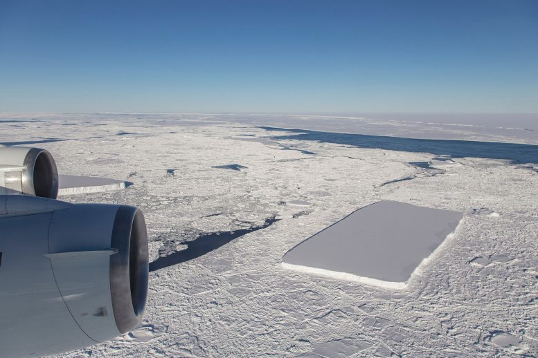 2 Rectangular Icebergs Spotted
