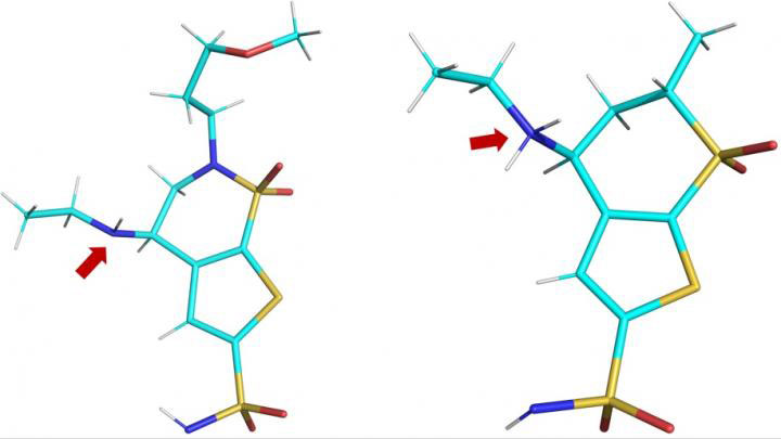 3D Structures of Brinzolamide and Dorzolamide