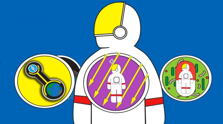 5 Hazards of Human Spaceflight
