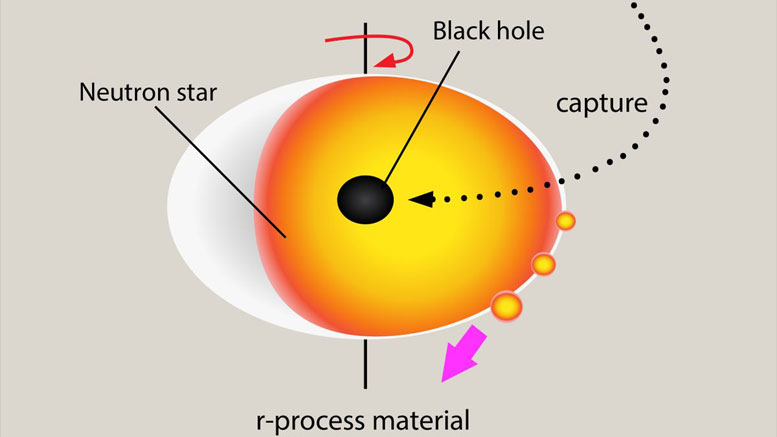 A Black Hole Captured by a Neutron Star