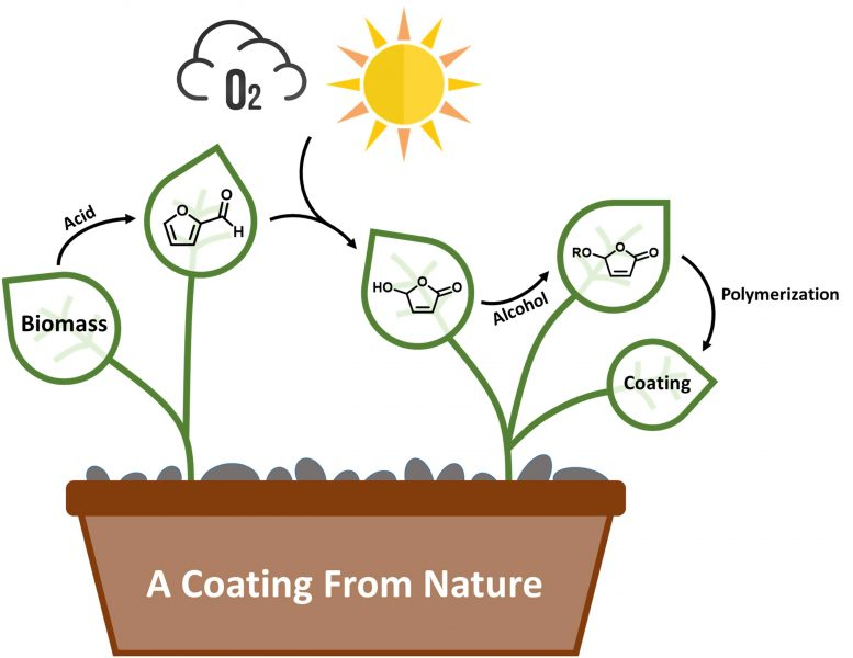 A Coating From Nature