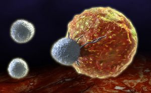 A New Approach to Cancer Immunotherapy