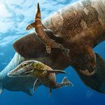 A New Birth Story for a Gigantic Marine Lizard That Once Roamed the Oceans