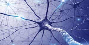 A New Method for Detecting Multiple Sclerosis