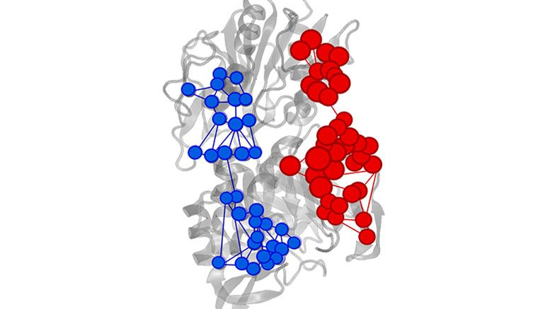 A New Tool For Understanding Enzymes