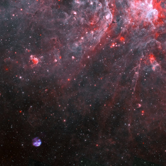 A Newly Discovered Young Galactic Supernova Remnant