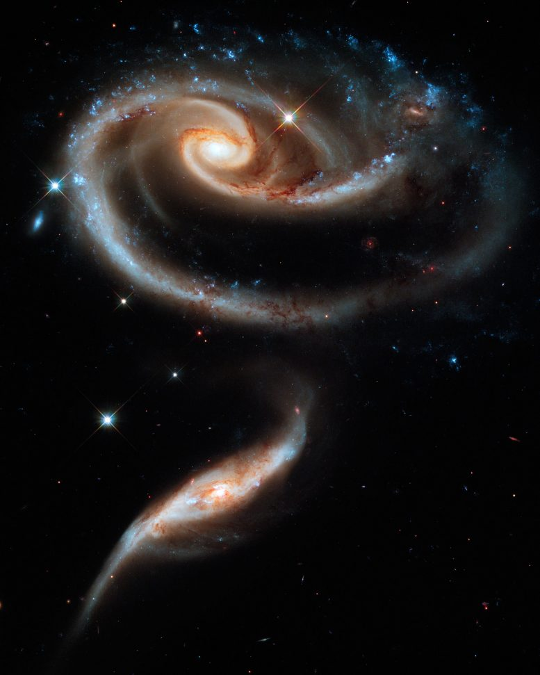 A Rose Made of Galaxies Arp 273