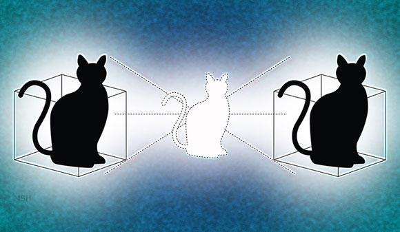 A Schrödinger Cat Living in Two Boxes