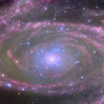 A Supermassive Black Hole in M81