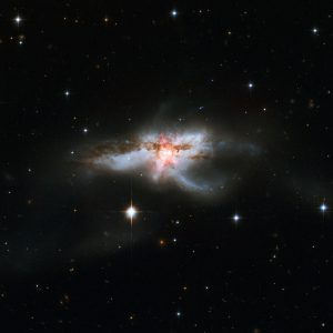 ALMA Images the Molecular Outflows of NGC 6240