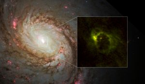 ALMA Views Rotating Dusty Gaseous Donut around an Active Supermassive Black Hole