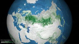 Above Ground Biomass in Russia