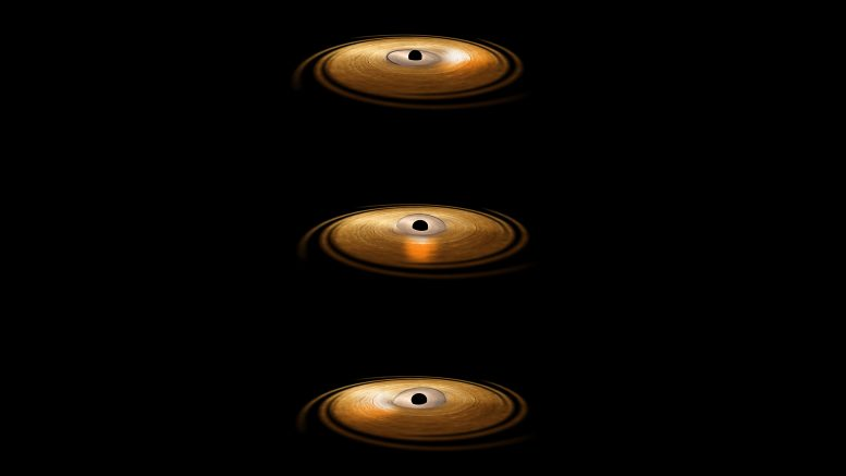 Accretion Disc Surrounding Black Hole