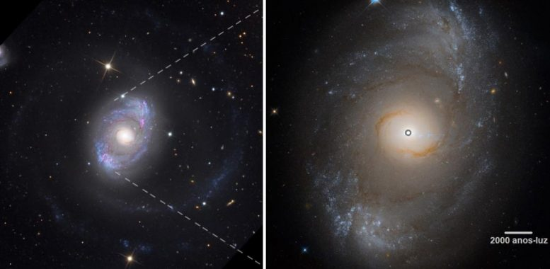 Active Galactic Nuclei Black Hole