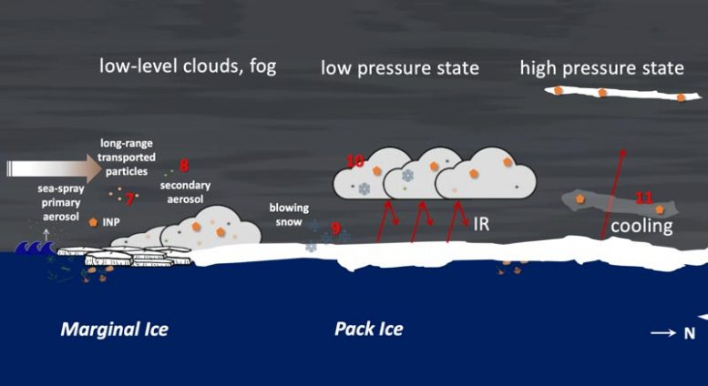 Aerosol Processes of Climate Relevance Schematic