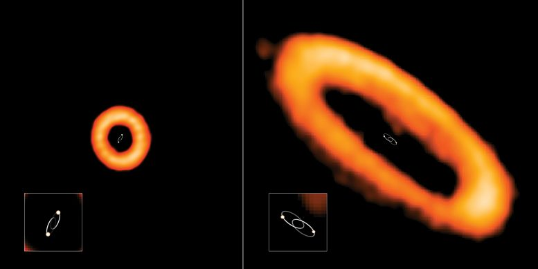 Aligned and Misaligned Protoplanetary Disks Around Binary Stars