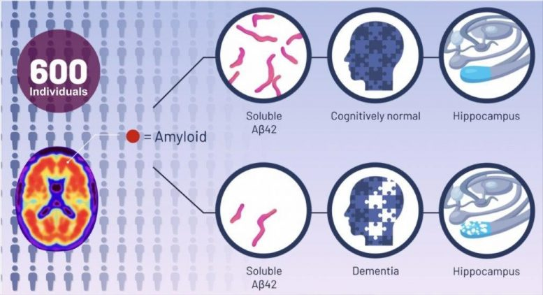 Alzheimer's Theory New Discovery