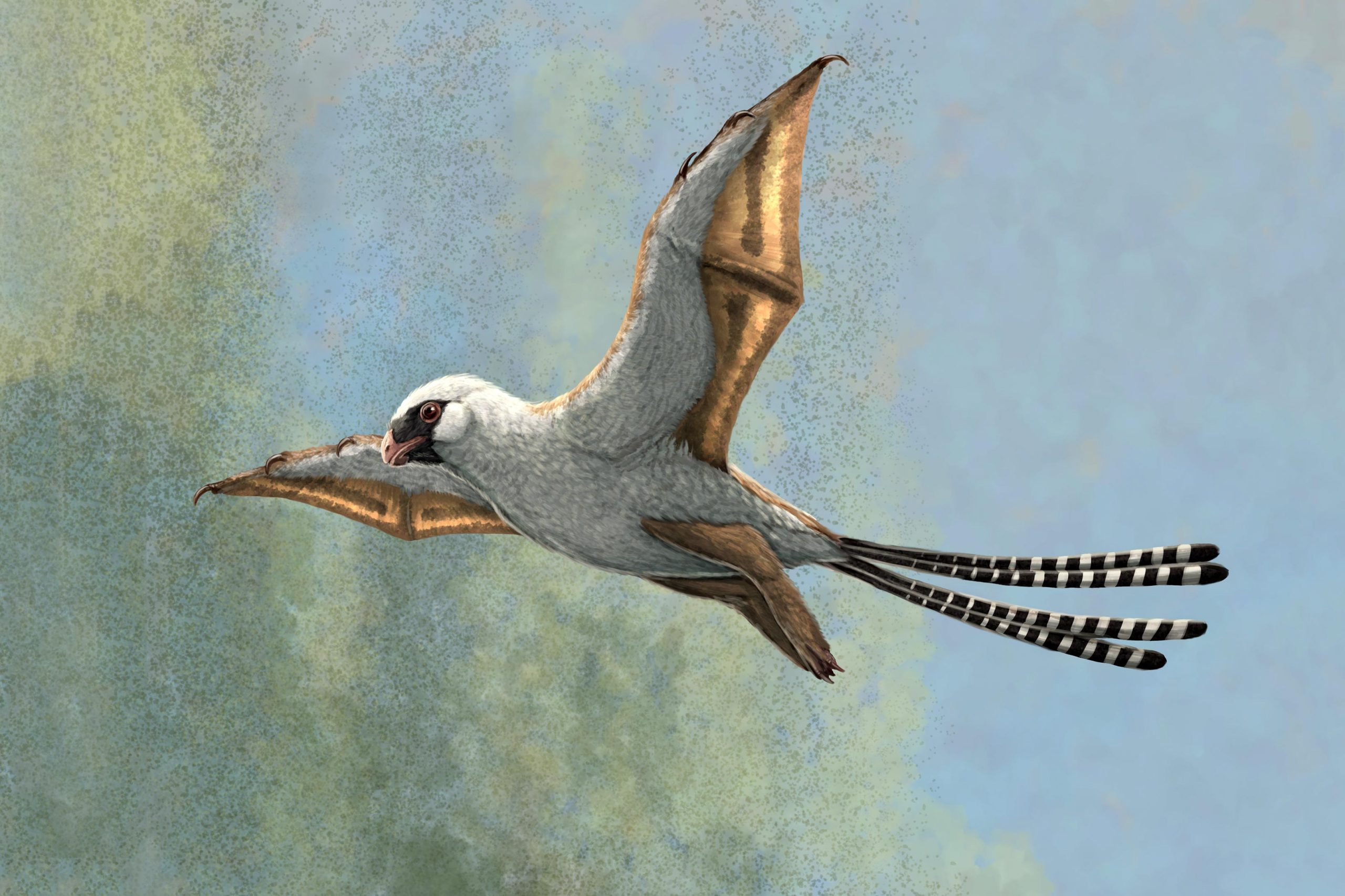 These Two Bird-Sized Dinosaurs Evolved Bat-Like Wings, but Struggled to Fly - SciTechDaily