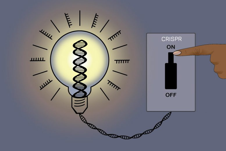 An On Off Switch for Gene Editing