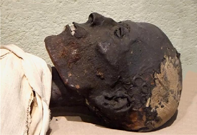 Analyzing Ancient Egyptian Embalming Materials