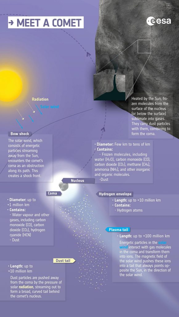 Anatomy of a Comet Infographic