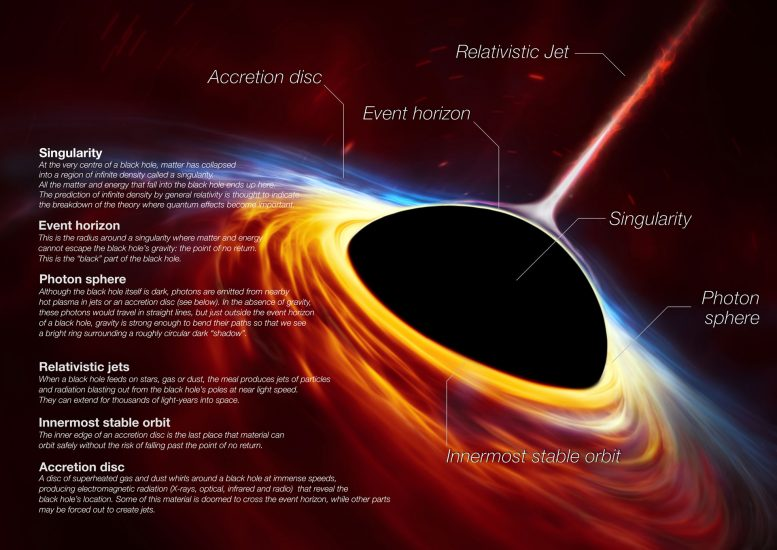 Black Hole Anatomy