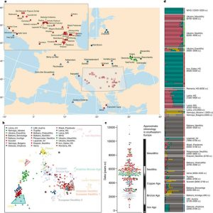 Ancient DNA Reveals Insight Into the First Farmers to Europe