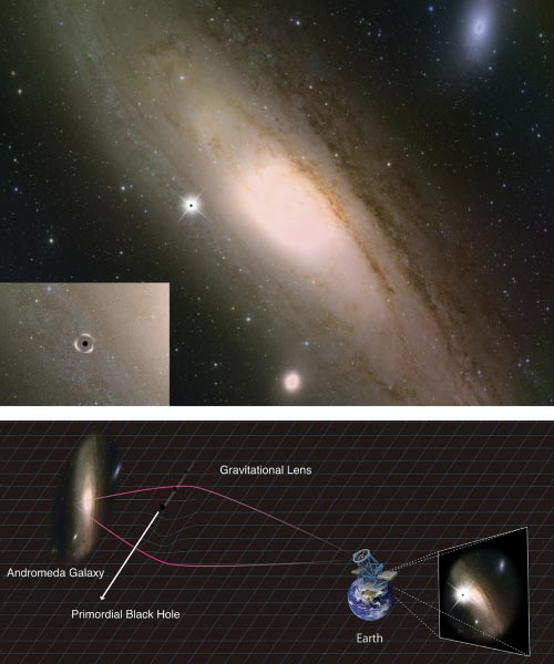 Andromeda Galaxy Primordial Black Hole