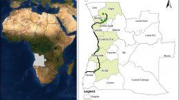 Angola Lubango Map of Africa