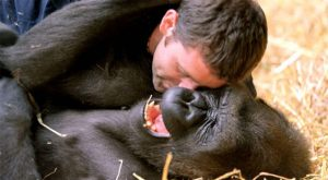 Animals Get Tickled in The Name of Science