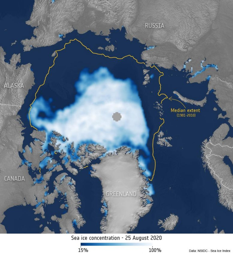 Arctic Sea Ice Concentration August 2020