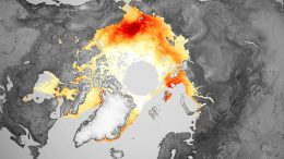 Arctic Sea Ice Freeze Trend