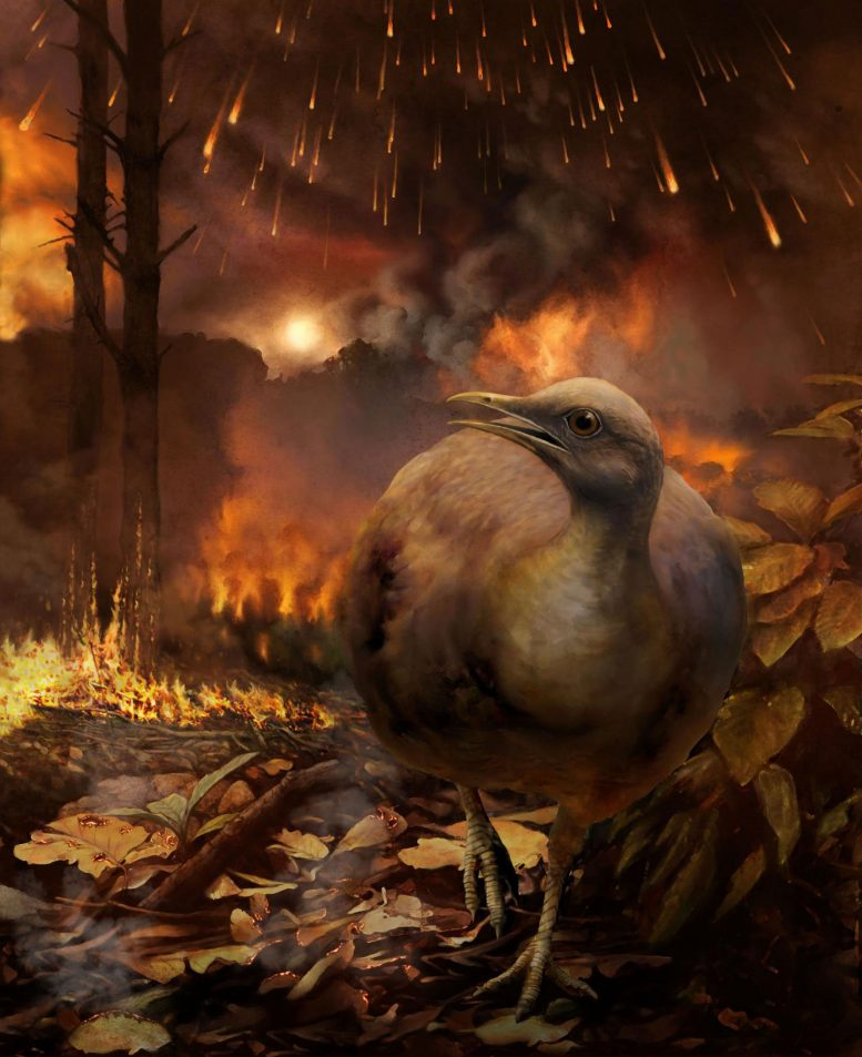 Asteroid Wiped Out Dinosaurs