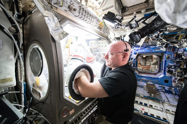 Astronaut Scott Kelly Microgravity Sciences Glovebox