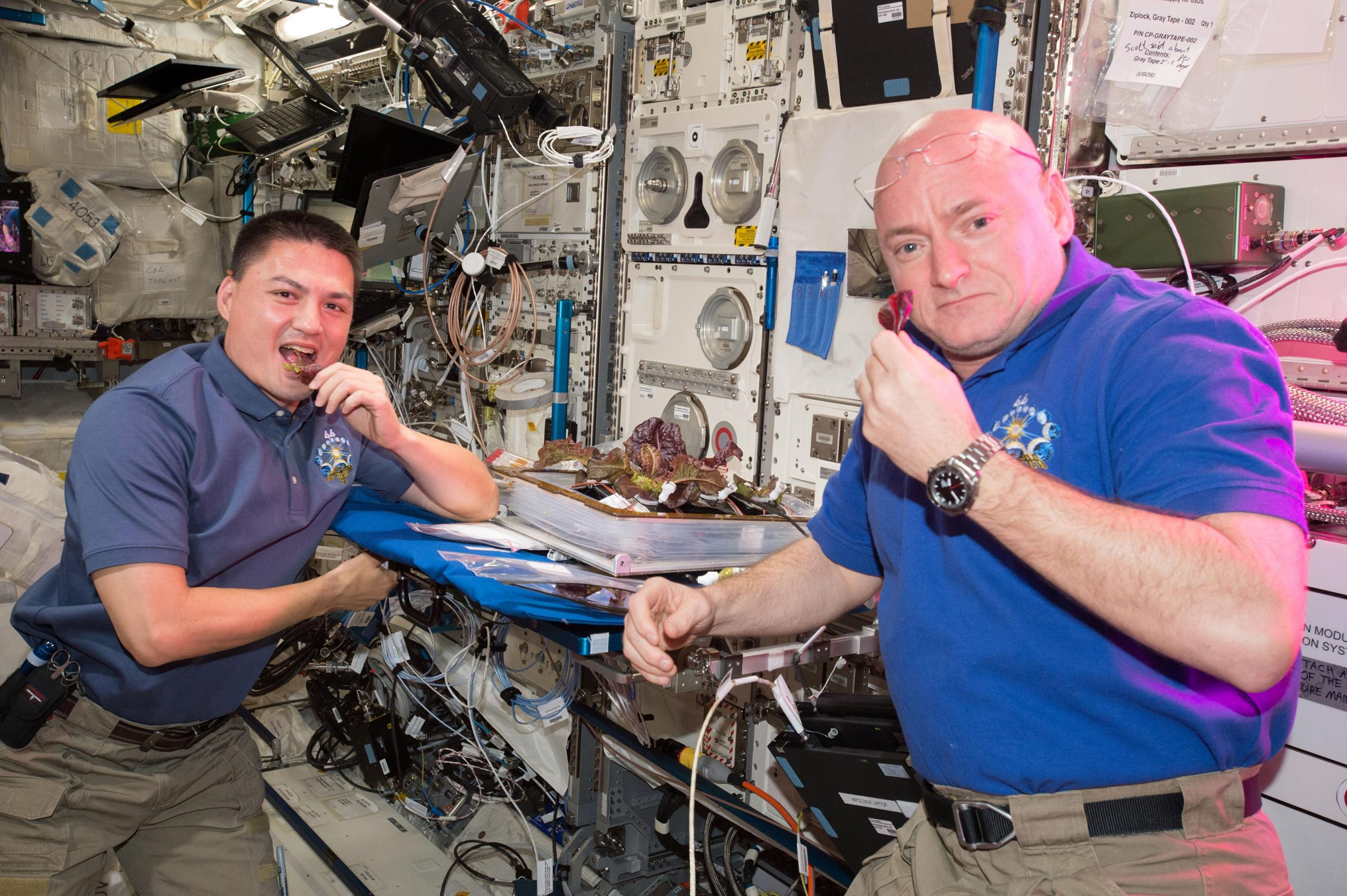 The International Space Station has 2 seats left for this trip