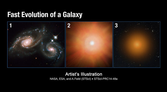 Astronomers Discover Massive Compact Galaxies with High-Velocity Outflows