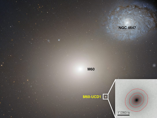 Astronomers Discover a Huge Black Hole at the Center of an Ultra-Compact Galaxy