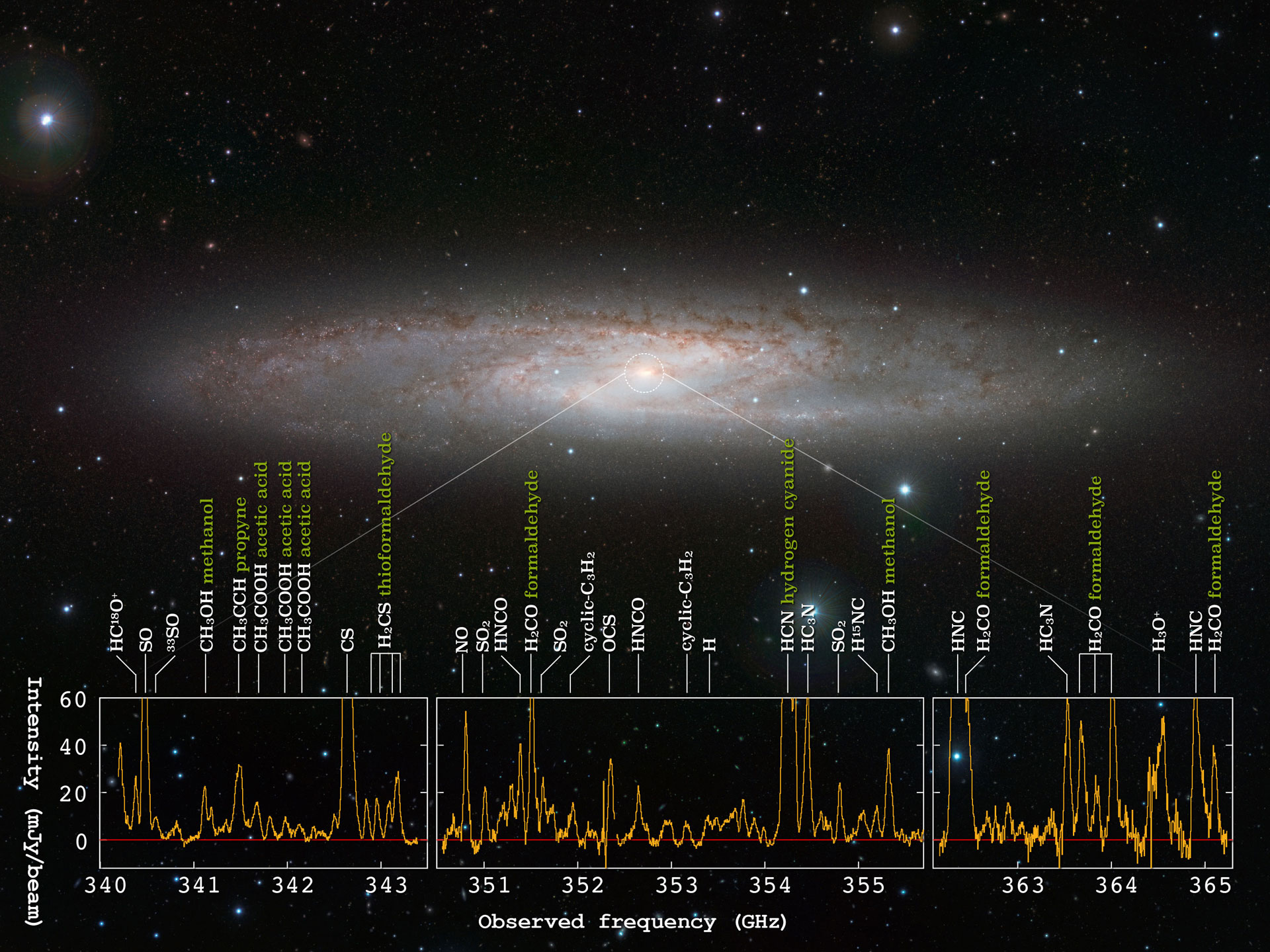 ALMA Reveals Diverse Nuclear Star Forming Activities In NGC 253