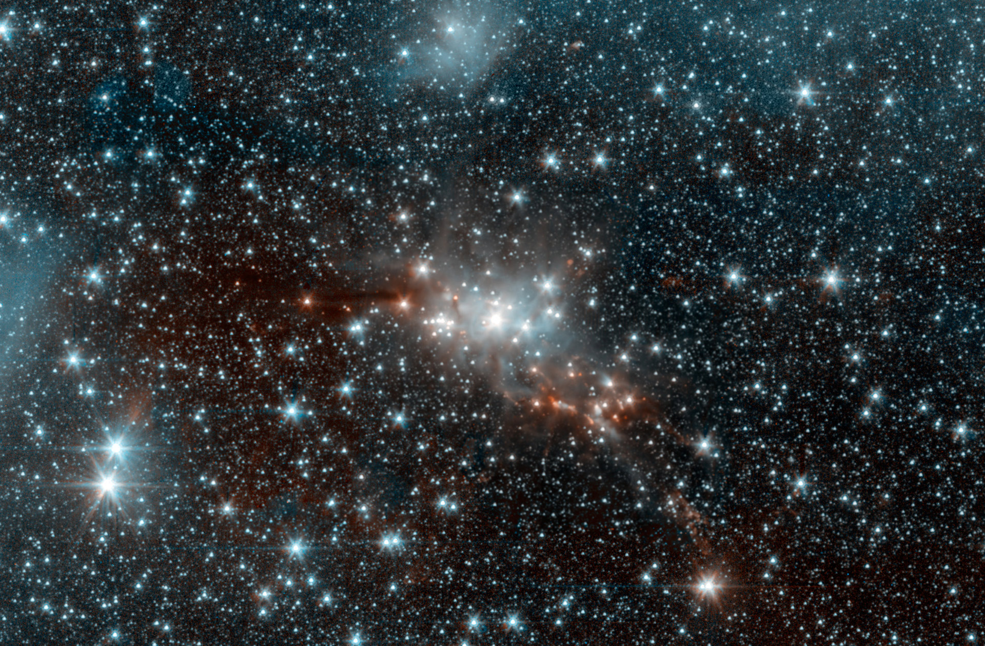 Astronomers study these to learn about stars