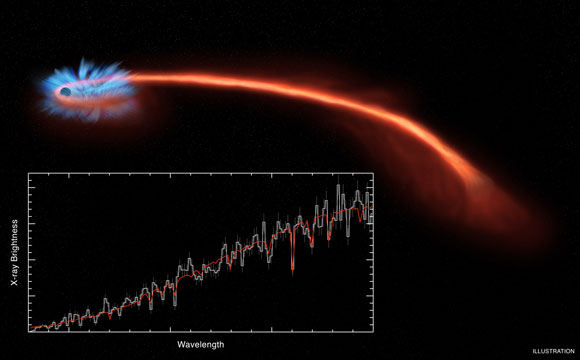 Astronomers Witness Stellar Debris Being Blown Away After a Black Hole Destroyed the Star