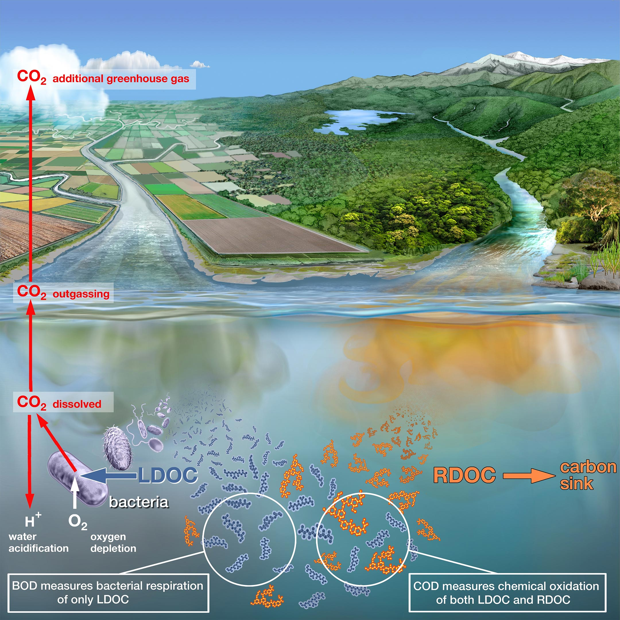 The new technique reliably measures whether rivers or lakes have run out of air