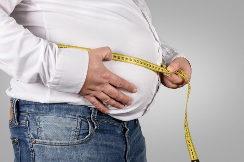 Belly Fat Obesity Weight Loss