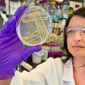 Berkeley Lab-led team explores a way to create biofuels