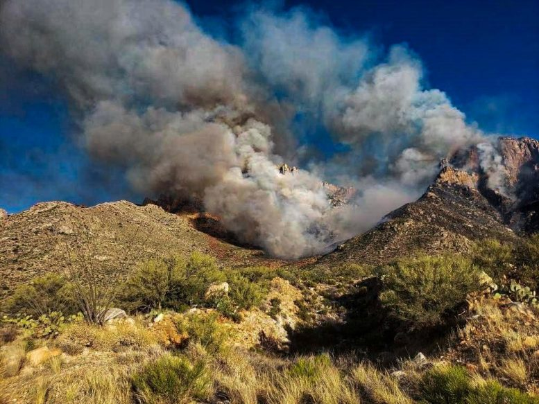 Bighorn Fire Catalina Mountains