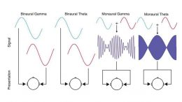 Binaural Beats Synchronize Brain Activity