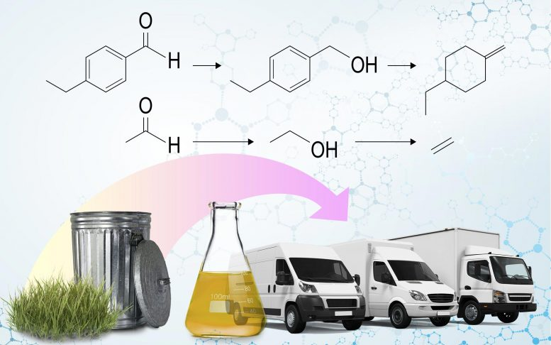 Biofuel for Transportation