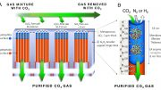 Biologically Inspired Membrane Purges Greenhouse Gases