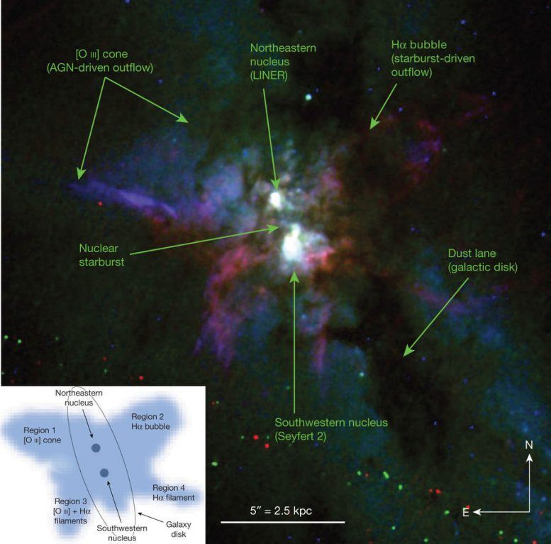 Black Hole and Stellar Winds Form Giant Butterfly