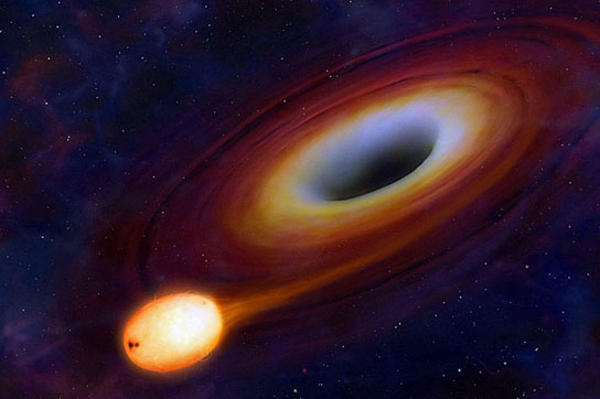 Black holes feed on stars