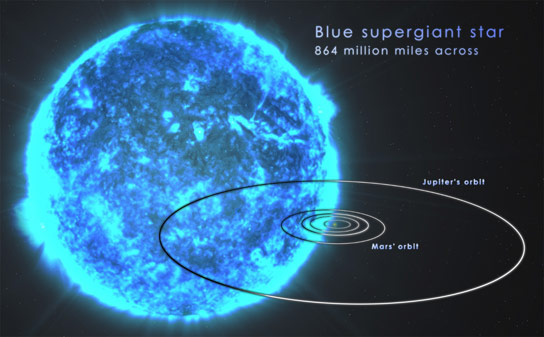 Blue Supergiant Star Most Likely Source of Ultra Long Gamma Ray Bursts